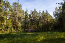 Helsingin kaunein suo, erään tutkijan mukaan.