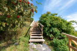 Uudet portaat huipulle. Kuvia Vuosaaren huipun kävelylenkiltä.
